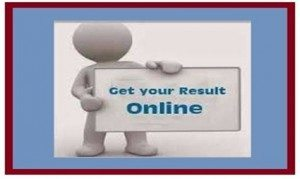 Check-Goa-10th-12th-Result-2016.jpg
