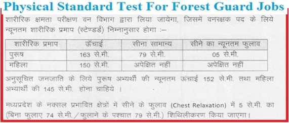 Physical Standar Test