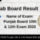 Punjab Board Result