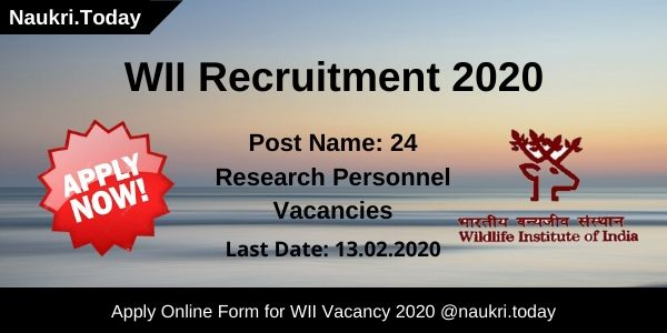 WII Recruitment 2020