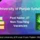 Central University of Punjab Syllabus 2020
